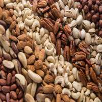 Dried Nuts Manufacturers