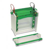 Gel Electrophoresis Equipment Manufacturers