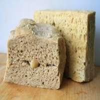 Wheat Gluten Manufacturers