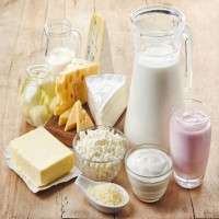 Dairy Products Manufacturers