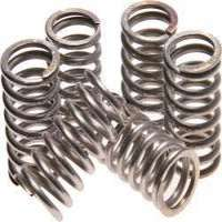 Stainless Steel Springs Manufacturers