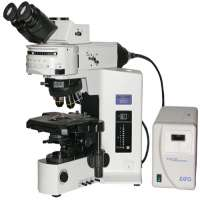 Fluorescent Microscope Manufacturers