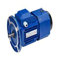 AC Brake Motors Manufacturers