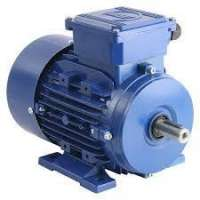 Dual Voltage Motors Manufacturers