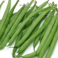 French Beans Manufacturers