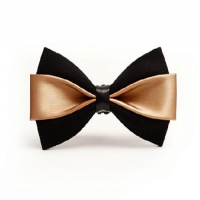 Fashion Bow Manufacturers