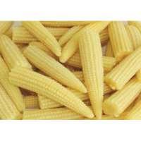 Frozen Baby Corn Manufacturers