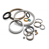 Spring Energized Seals Manufacturers