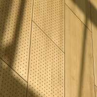 Perforated Acoustic Panels Manufacturers