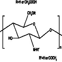 羧甲基壳聚糖 制造商