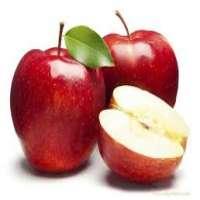 克什米尔苹果 制造商