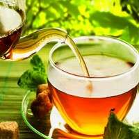 Ceylon Tea Manufacturers