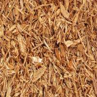 Wood Pulp Manufacturers