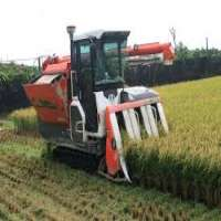 Rice Cutting Machine Importers