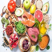 High Protein Food Manufacturers