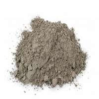 Ambuja水泥 制造商