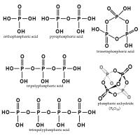 正磷酸盐 制造商