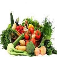 新鲜蔬菜 制造商
