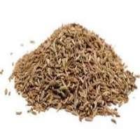 Cumin Seeds Manufacturers