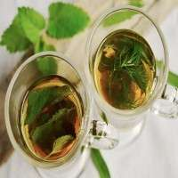 Green Herbal Tea Manufacturers