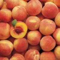 Peach Manufacturers