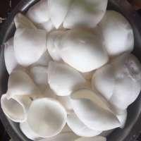 Frozen Shredded Coconut Manufacturers