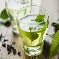 Green Tea Drinks Manufacturers