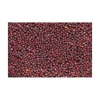 Red Mustard Seeds Manufacturers