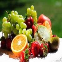 新鲜水果 制造商