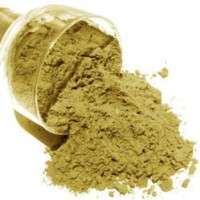Green Coffee Powder Manufacturers