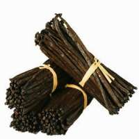 Vanilla Beans Manufacturers
