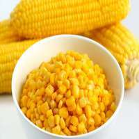罐装甜玉米 制造商