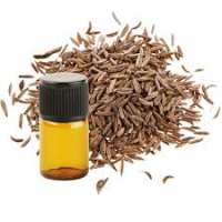 Caraway Seed Oil Manufacturers