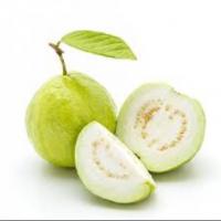 Guava Manufacturers