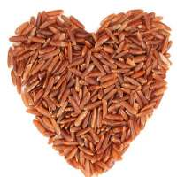 红米 制造商