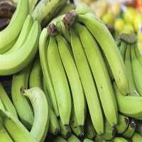 绿色香蕉 制造商