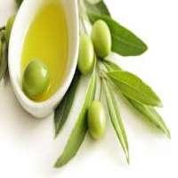 有机橄榄油 制造商