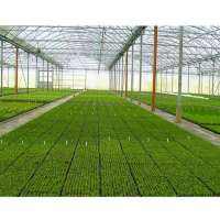 Greenhouse Construction Services Manufacturers