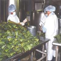 Aloe Vera Processing Plant Manufacturers