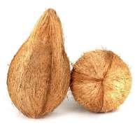 去壳的椰子 制造商