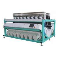 Cashew Nut Color Sorter Importers