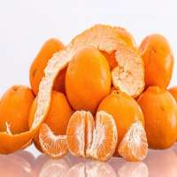 Mandarin Orange Manufacturers
