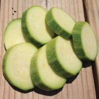 Zucchini Seeds Manufacturers