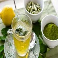 Moringa Tea Manufacturers