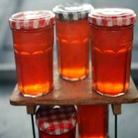 Apple Jelly Manufacturers