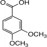 藜芦酸 制造商