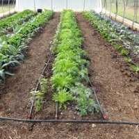 Garden Drip Line Manufacturers