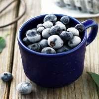 冷冻蓝莓 制造商
