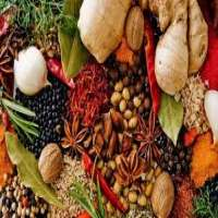 Natural Spices Manufacturers