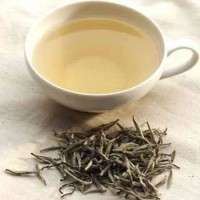 Tea Premix Manufacturers